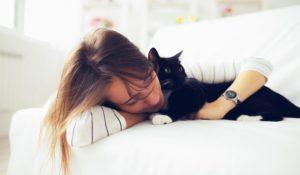 Tierversicherung Kündigung