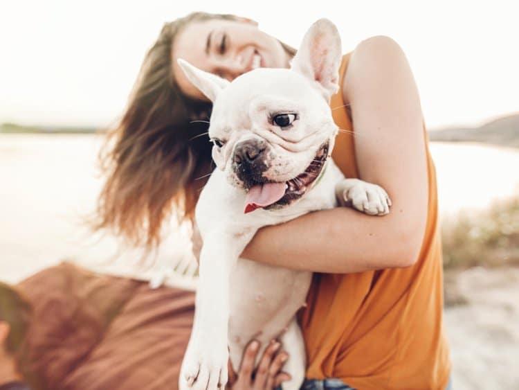 Welche Kosten deckt eine Tierversicherung?